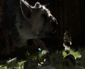 The Last Guardian Banner