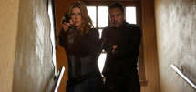 Agents of shield spinoff banner